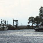 New Castle Island 2