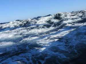 Yep ... BIG seas! Funny how the waves always look smaller in a picture