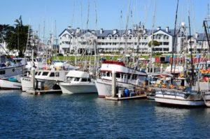 Part of the Hal;f Moon Bay fishing fleet